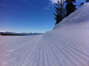 Ant's Eye View At Squaw Valley