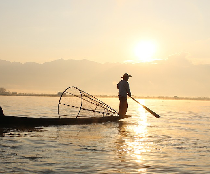 Blogging Is Like Fishing: You Never Know What You're Going To Catch